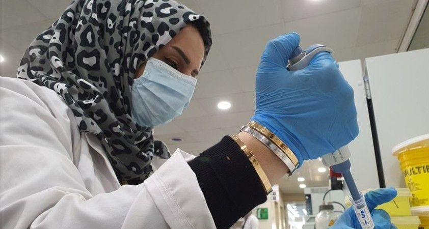 Cezayir'den koronavirüsle mücadelede mobil uygulama