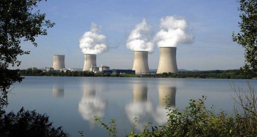 Dünya Nükleer Birliği: '2020, nükleer enerjinin direnç yılı oldu'