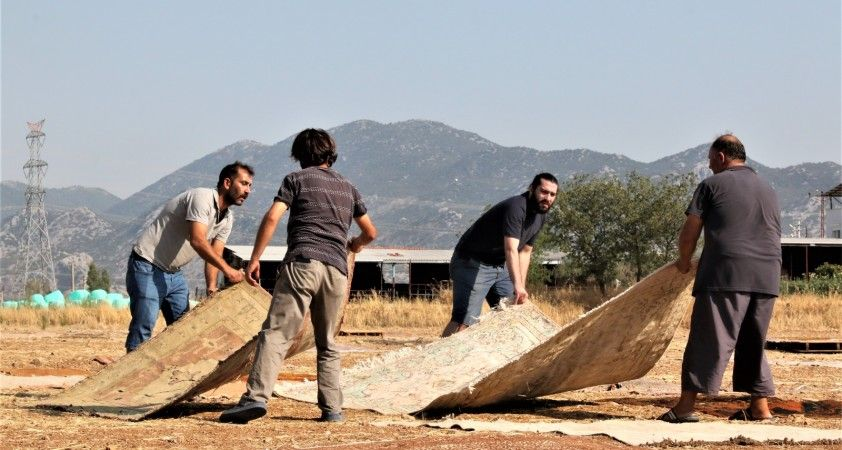 Antalya'da 'halı mevsimi' sona erdi hasat başladı
