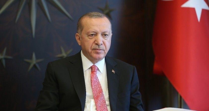 Cumhurbaşkanı Erdoğan'dan 'Dünya Biyolojik Çeşitlilik Günü' paylaşımında Haliç vurgusu