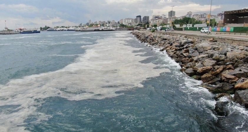 Bostancı Sahili'nde deniz salyası yoğunluğu su altı kamerasıyla görüntülendi