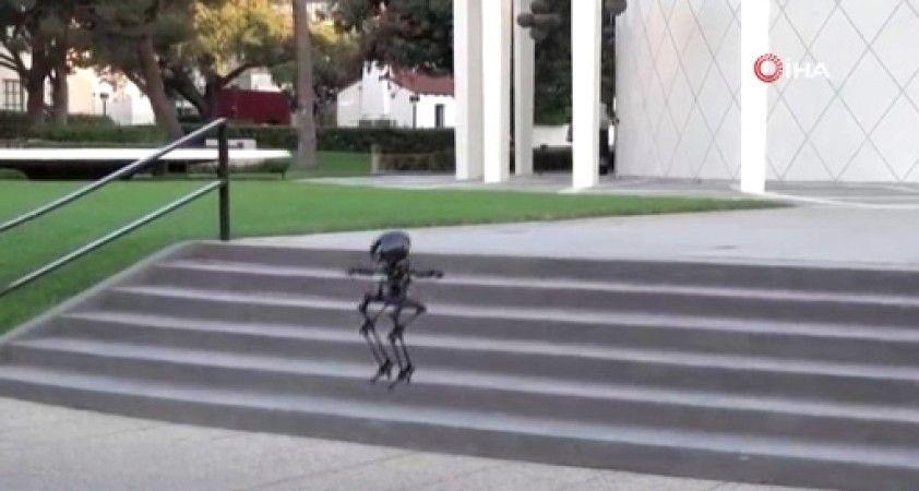Hem uçabilen hem de yürüyebilen robot hünerlerini sergiledi