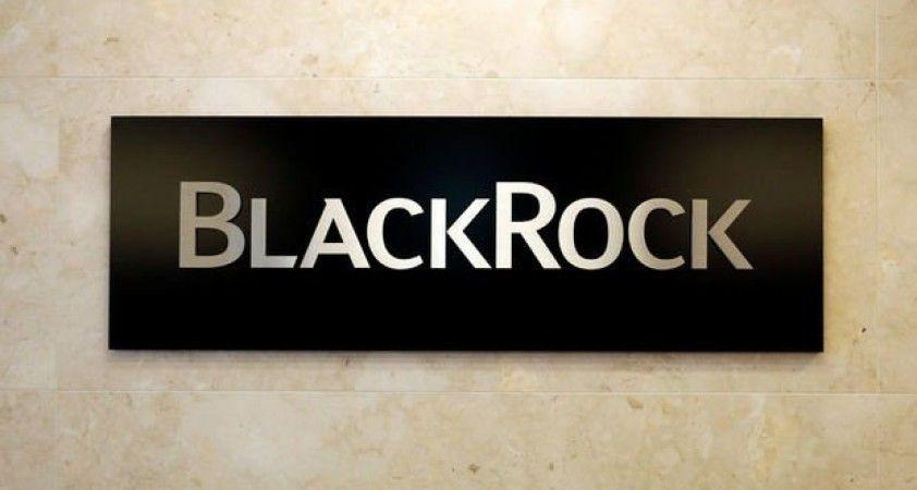 BlackRock: Yatırımcılar düşük faiz ortamında riskini artırıyor