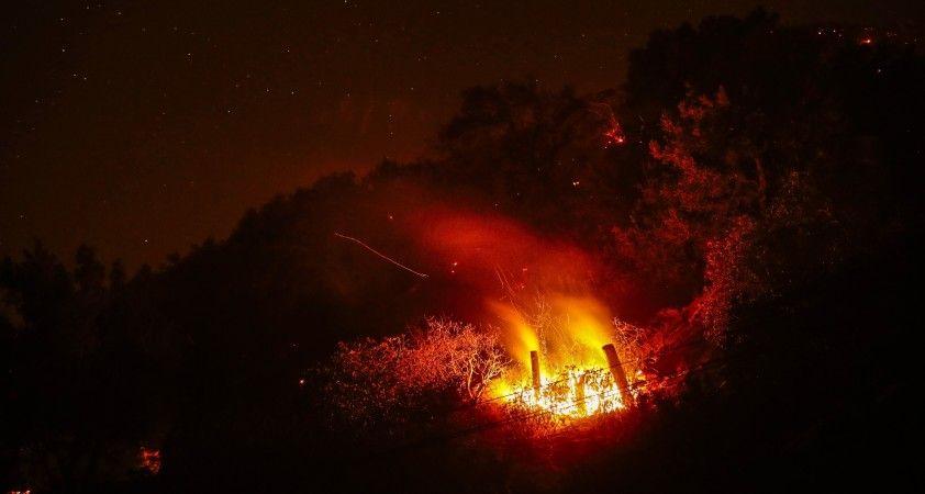 California'da yangın: 5 bin 500 hektar alan yandı
