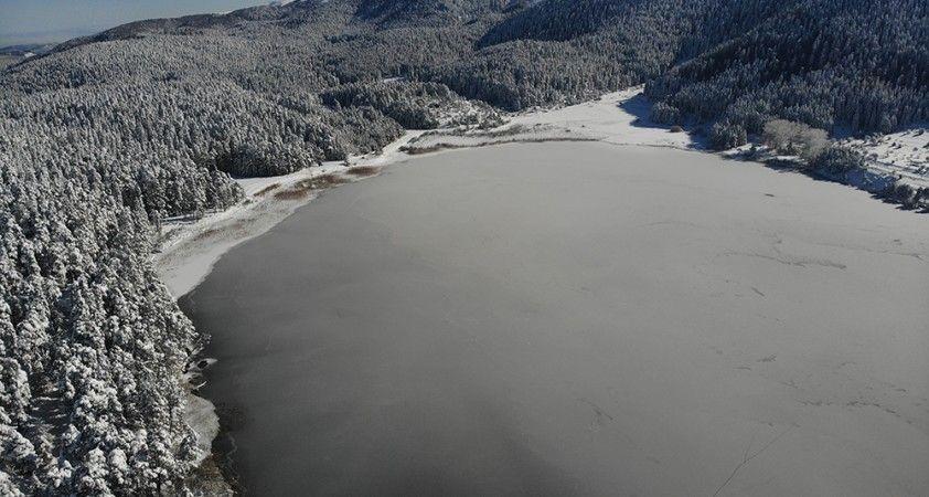 Abant Gölü'nün yüzeyi buz tuttu