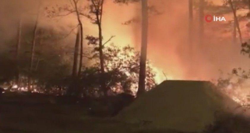 New Jersey'de iki farklı noktada orman yangını