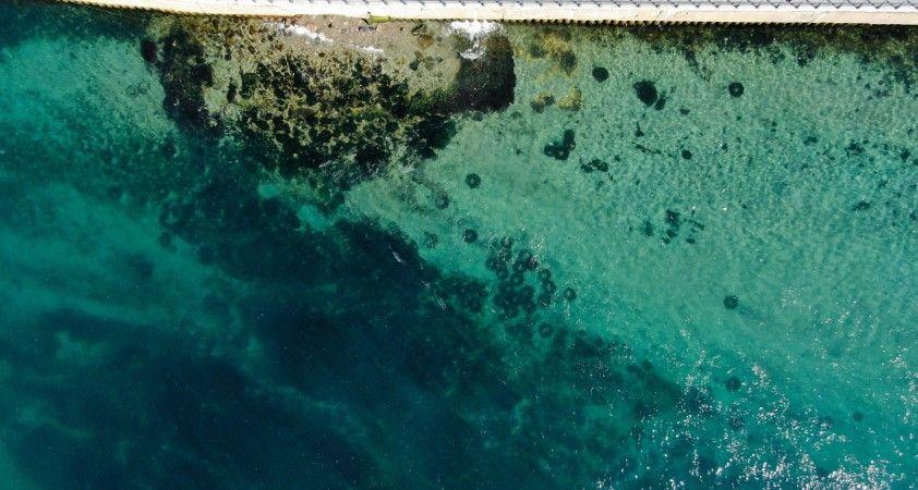Üsküdar'da denizin dibi araç lastiği doldu