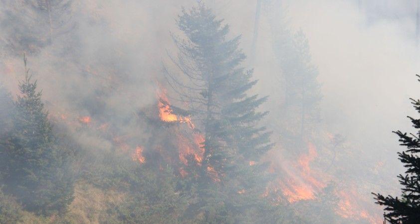 3 gündür devam eden orman yangını yayla evlerine kadar ulaştı