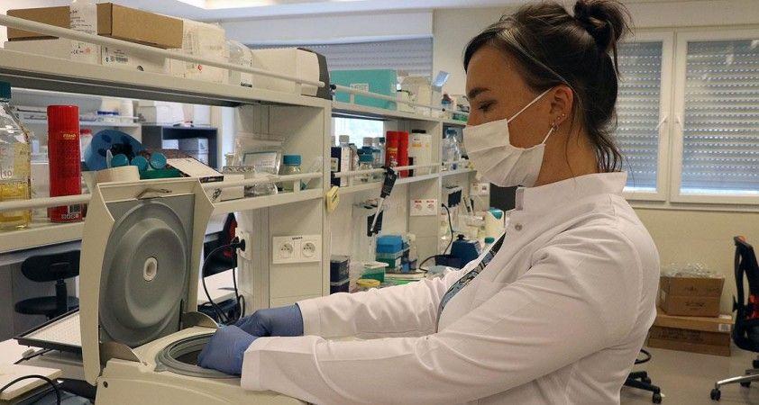 İBG'deki Kovid-19 aşı çalışmasında hayvan deneyleri olumlu sonuçlandı