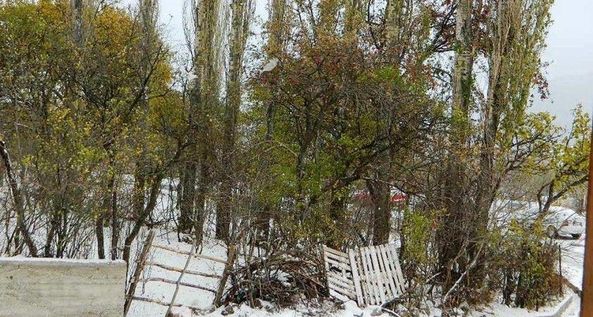 Kar, Posof'ta doğaya renk kattı