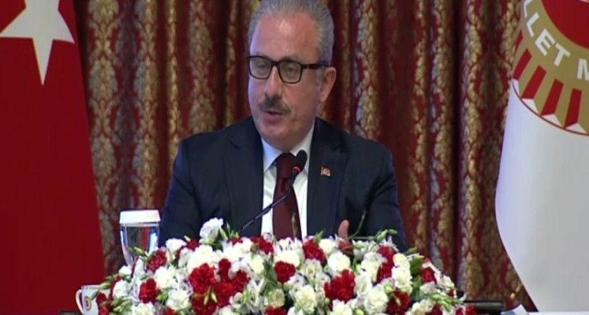 TBMM Başkanı Şentop yasama faaliyetlerini değerlendirdi