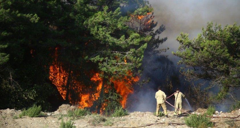 Hatay'daki orman yangınlarıyla ilgili 2 şüpheli tutuklandı