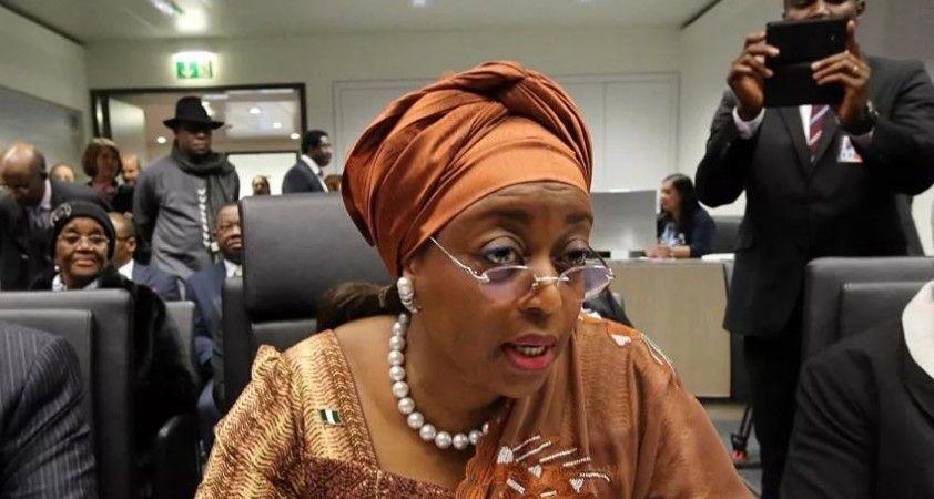 Nijerya'da eski bakanın 153 milyon doları ve 80 evine el konuldu