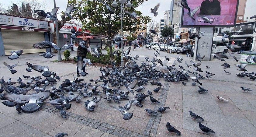 Silivri'de aç kalan güvercinleri polis besledi
