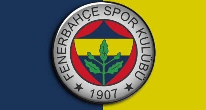 Sangare, Fenerbahçe'de