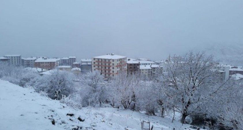 Kulp'ta kar yağışı nedeniyle okullar tatil edildi